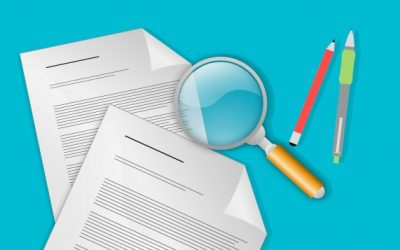 Crisi d'Impresa: la nomina del revisore o dell'organo di controllo per le Srl